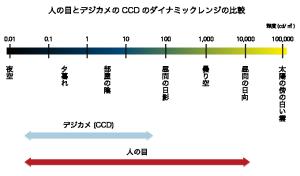 人の目とカメラのCCDのダイナミックレンジの比較