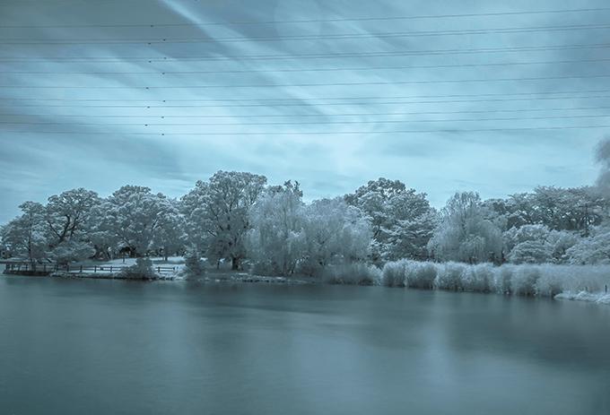 門池公園で赤外線写真