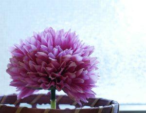 窓際に置いた花の小物