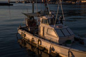 内浦湾の船